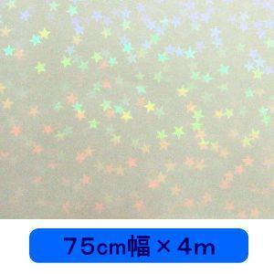 透明 ホログラムシート マイクロスター(無色) 75cm幅×4m ロール|d-inform