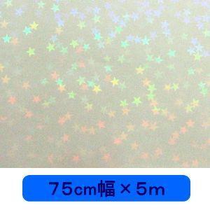 透明 ホログラムシート マイクロスター(無色) 75cm幅×5m ロール|d-inform