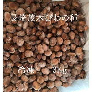 長崎茂木びわの種 3kg