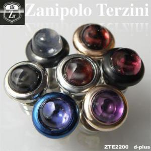 ピアス メンズ ステンレス/ピアス/ザニポロタルツィーニ/Zanipolo Terzini/ザニポロ zte2200 オープン記念 セール|d-plus-genius