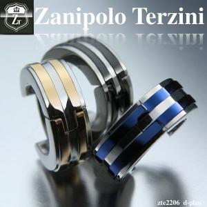 ピアス メンズ ステンレス/ピアス/ザニポロタルツィーニ/Zanipolo Terzini/ザニポロ/EXILE/エグザイル/ zte2206 オープン記念 セール|d-plus-genius