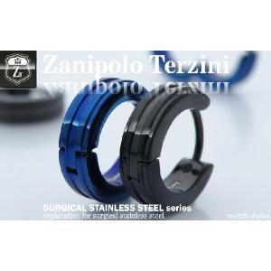 ピアス メンズ ステンレス/ピアス/ザニポロタルツィーニ/Zanipolo Terzini/ザニポロ ZTE2226 オープン記念 セール|d-plus-genius|02