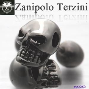 ピアス メンズ ステンレス/ピアス/ザニポロタルツィーニ/Zanipolo Terzini/ザニポロ ZTE2260 オープン記念 セール|d-plus-genius