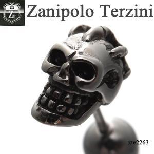 ピアス メンズ ステンレス/ピアス/ザニポロタルツィーニ/Zanipolo Terzini/ザニポロ ZTE2263 オープン記念 セール|d-plus-genius