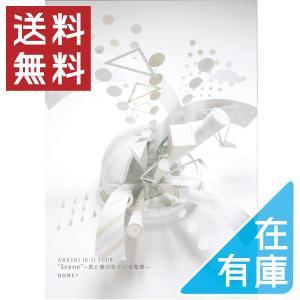 ネコポス発送 嵐 DVD ARASHI 10-11TOUR Scene 君と僕の見ている風景 DOME+ 通常仕様 PR|d-suizan-p
