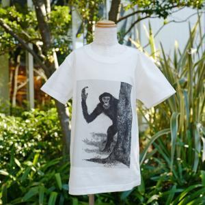 蔦屋書店限定 『ドエクル探検隊』 Tシャツ (キッズサイズ)|d-tsutayabooks