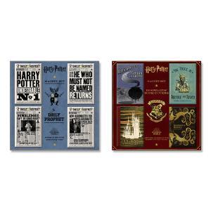 マグネットセット 日刊予言者新聞/ホグワーツの教科書 ハリー・ポッター|d-tsutayabooks