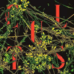 Host [Evergreen Vinyl/限定盤] Cults d-tsutayabooks