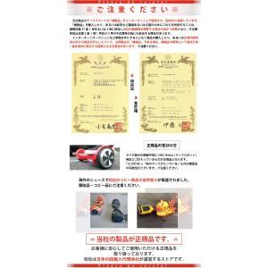 【1年保証付き】チックスマート C1 電動二輪車 立ち乗り二輪車 IO Hawk IO HAWK[EXC]|dabada|06