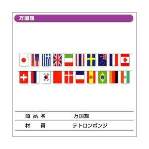 万国旗 10m|daiei-sangyo