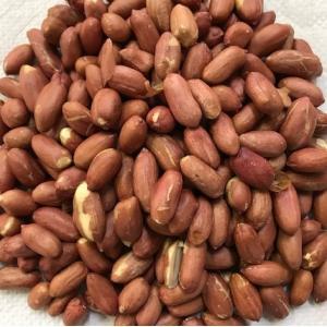 皮付きピーナッツ 落花生 500g