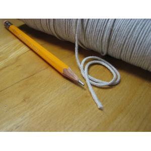 エレクトロライン(静電気除去紐) 3m(フィルム・印刷加工の静電気除去・帯電防止、除電グッズ)|daihyaku