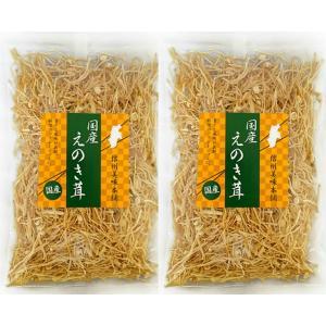 えのき茶 信州長野県産 無添加 50gx10袋 乾燥えのき茸 干しえのき|daiichibutsusan