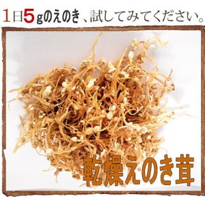乾燥えのき茸 50gx10 えのき氷にも 長野県産限定使用 ...