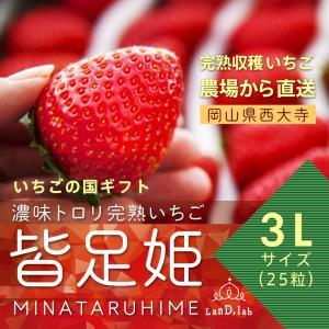 いちごの国ギフト[3Lサイズ(25粒)]濃味トロリ完熟いちご『皆足姫(みなたるひめ)』|daiki-foods