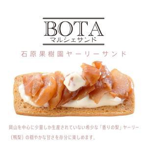 サブレサンドBOTA 石原果樹園ヤーリーサンド(5個入り)|daiki-foods
