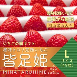 いちごの国ギフト[ Lサイズ(49粒) ]濃味トロリ完熟いちご『皆足姫(みなたるひめ)』|daiki-foods