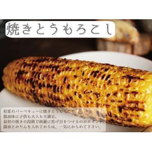 ゴールドラッシュ とうもろこし 熊本県産 約4kg 10〜13本 スイートコーン 朝採れ 新鮮 トウモロコシ 産地直送 お取り寄せ ギフト 御中元|daikichimiso|05