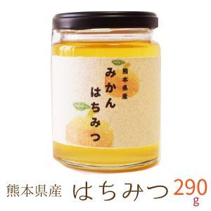国産 はちみつ 300g 熊本県産 非加熱 濃熟蜂蜜 国産 純粋はちみつ ミカン蜜 みかん蜜 瓶入り プレゼント ギフト|daikichimiso