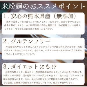 米粉麺 グルテンフリー 6個入り 熊本県産 ヒノヒカリ 国産 米粉うどん パスタ 離乳食 フォー|daikichimiso|04