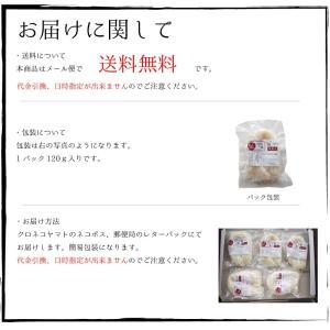 米粉麺 グルテンフリー 6個入り 熊本県産 ヒノヒカリ 国産 米粉うどん パスタ 離乳食 フォー|daikichimiso|06
