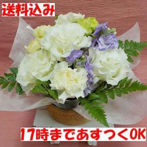 ☆お花の大きさ 高さ約16cm 幅約17cm ※お花のご指定はお受けできません ※お花の色合いはお客...
