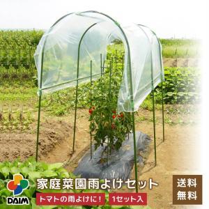・降雨が苦手なトマトやナスから、疫病の原因になる雨水の付着を防ぎます。 ・幼少の頃から雨よけハウスを...