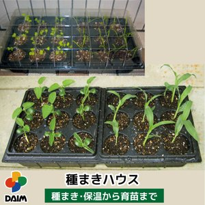 daim 育苗ポット 種まきハウス【家庭菜園 園芸 用品】