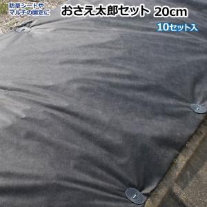 おさえ太郎セット 20cm 10セット入