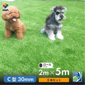人工芝 C型 芝丈30mm 2m×5m 2本セット|daim-factory