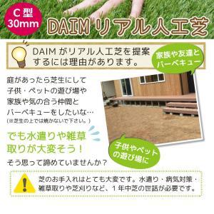 人工芝 C型 芝丈30mm 2m×5m 2本セット|daim-factory|03