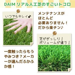 人工芝 C型 芝丈30mm 2m×5m 2本セット|daim-factory|05