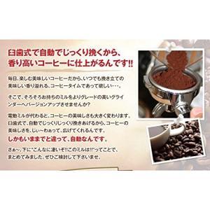 【内容量】●メリタ 電動コーヒーミルパーフェクトタッチ2 CG-4B ●エスプレッソブレンド500g...