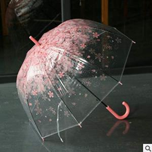 Wanghong 透明な傘 長傘 ジャンプ傘 おしゃれ ドーム型 高強度グラスファイバー採用 梅雨対策 バブルアンブレラ 女用の傘 頑丈な8本骨 daim-store