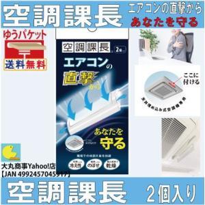 エアコンの直撃からあなたを守る【空調課長】2個入り|daimarubio