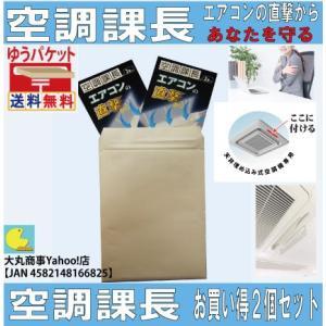 エアコンの直撃からあなたを守る【空調課長】お買い得2個セット|daimarubio
