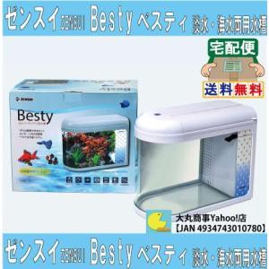 ゼンスイ 卓上インテリア小型水槽 Besuty(ベスティ)|daimarubio