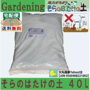 そらのはたけの土 40L 【天然素材100%・完熟堆肥配合・保水力抜群・草花にも最適】|daimarubio
