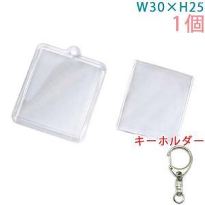 ハメパチ ミニ長方形(プリクラ大) KK30 1個入り (キーホルダー 555M付)|daiomfg|02