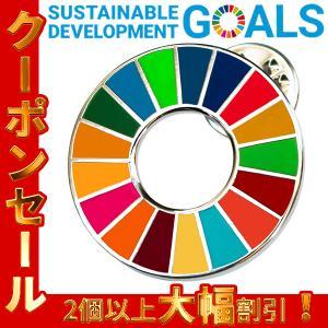 SDGs 国連ガイドライン対応 ピンバッジ バッチ バッヂ (平型)