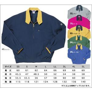 エコカラージャンパー 5L 【スタッフジャンパー/イベントジャンパー/イベントブルゾン】|dairyu21