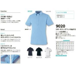 ボタンダウンポロシャツ 半袖 ドライ 吸汗速乾 9020 男女兼用 小倉屋|dairyu22