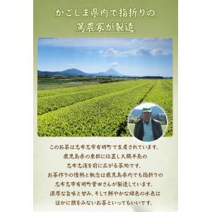 送料無料 ゆたかみどり特盛500g お茶 緑茶 鹿児島茶 深蒸し茶 日本茶 茶葉 お得 徳用|daisan|04