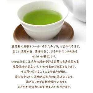 送料無料 ゆたかみどり特盛500g お茶 緑茶 鹿児島茶 深蒸し茶 日本茶 茶葉 お得 徳用|daisan|05