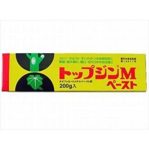 【ニッソーグリーン】トップジンMペースト(20...の関連商品2