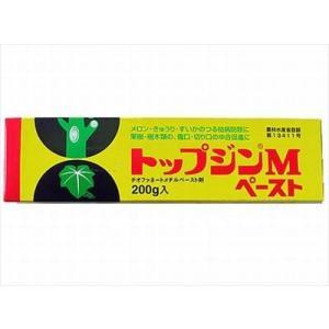 【ニッソーグリーン】トップジンMペースト(20...の関連商品1