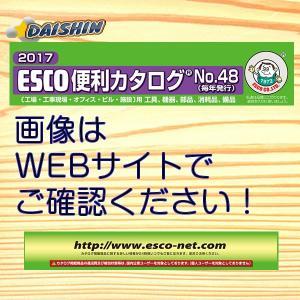 エスコ ESCO 12mmx 30m ついに再販開始 テトロンロープ I171106 両側アイ加工 EA628MD-121A 無料