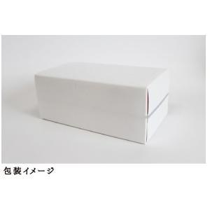 七宝ティシュー|daishowafirst|05