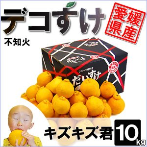 愛媛県産 デコすけ キズキズ君 10kg|daisuke