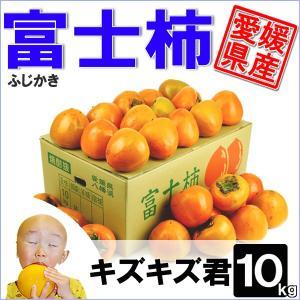 富士柿 キズキズ君 10kg|daisuke
